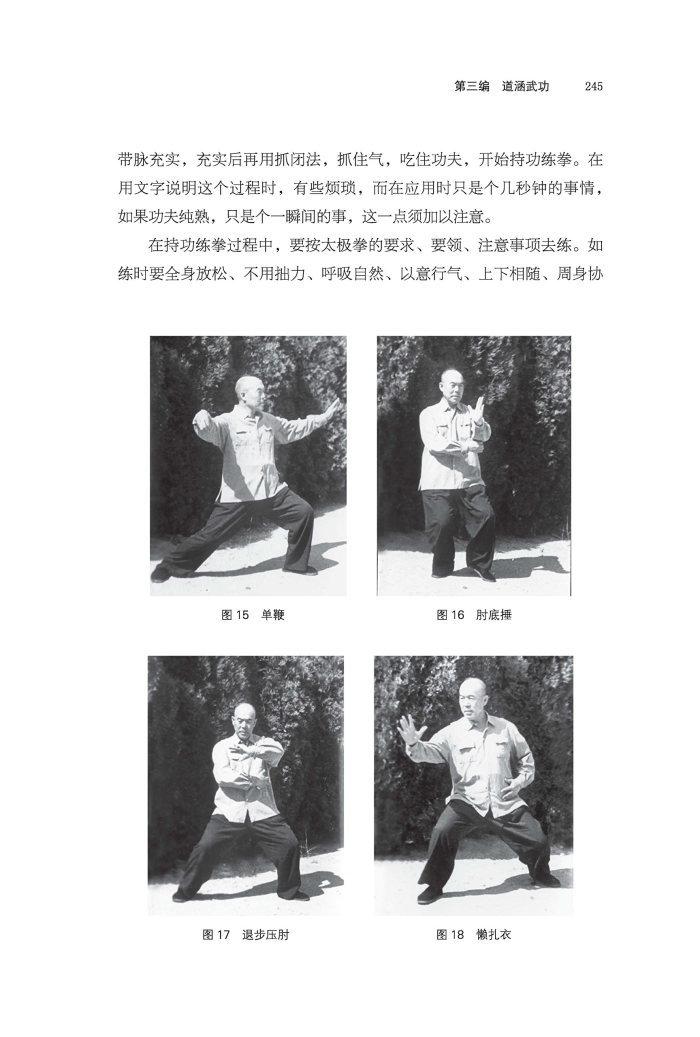 中道皇皇-梅墨生太極拳理念与心法