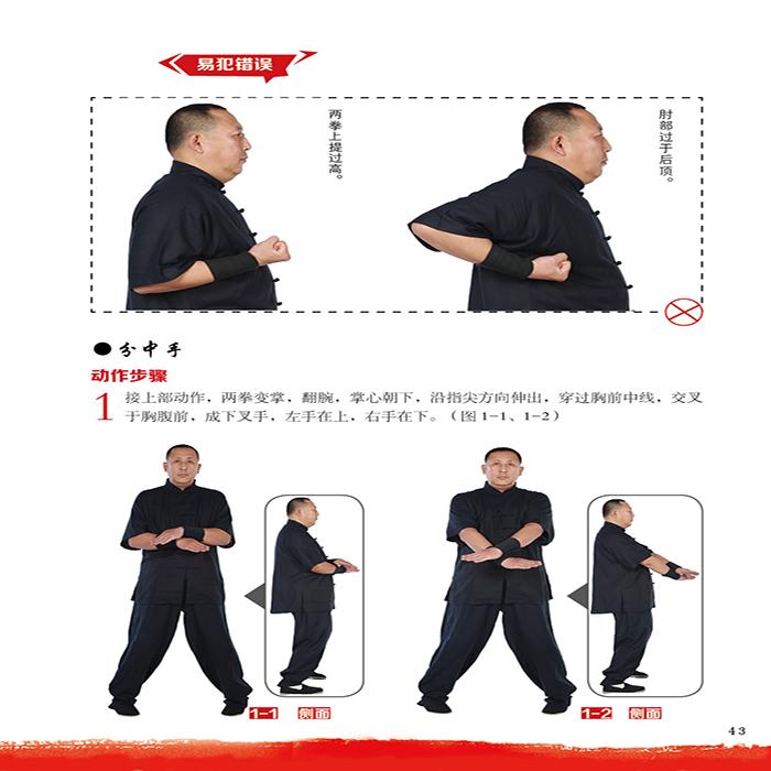 香港叶問咏春(BOOK+DVD)