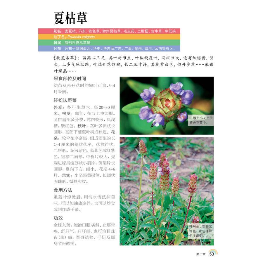 中国野菜400種原色図鑑